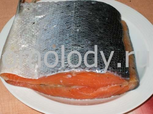 Lox or Salmon salted with spices